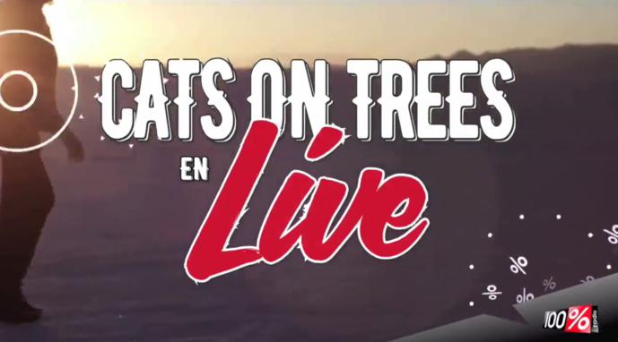 Cats on Trees en direct sur 100%