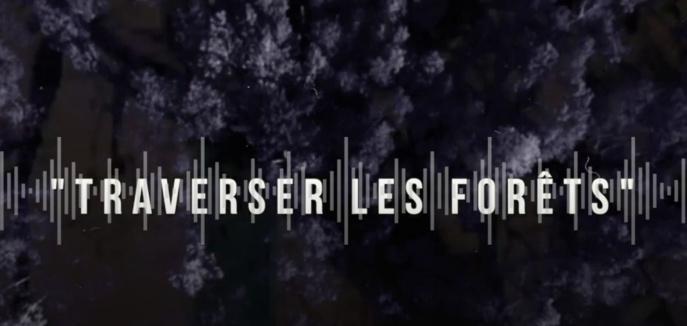 """""""Traverser les forêts"""" : un documentaire radio remporte le Prix Grandes Ondes"""