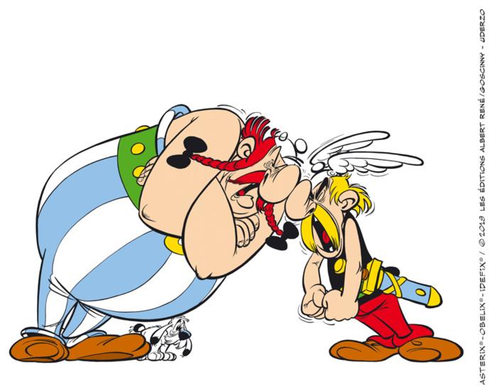 La Zizanie, aux éditions Albert René/Goscinny, est le 15e album de la série de bande dessinée Astérix le Gaulois de René Goscinny (scénario) et Albert Uderzo (dessin) paru en 1970.
