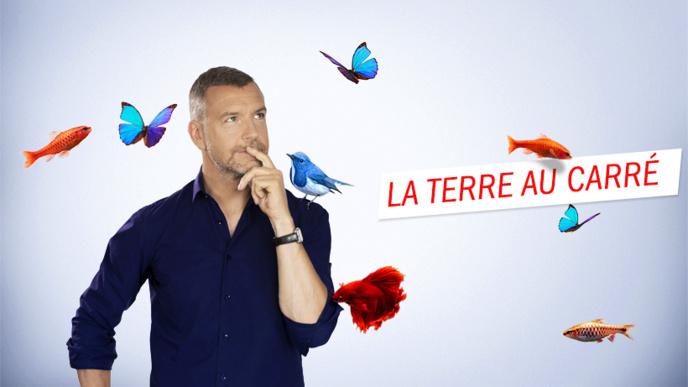 Radio France récompensée au 22e Grand Prix des Médias