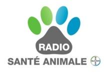 Une webradio sur... les animaux