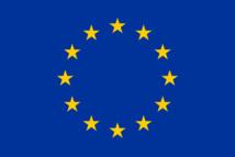 RFE : le Sénat adopte la résolution