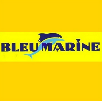 Bleu Marine revit sur le digital