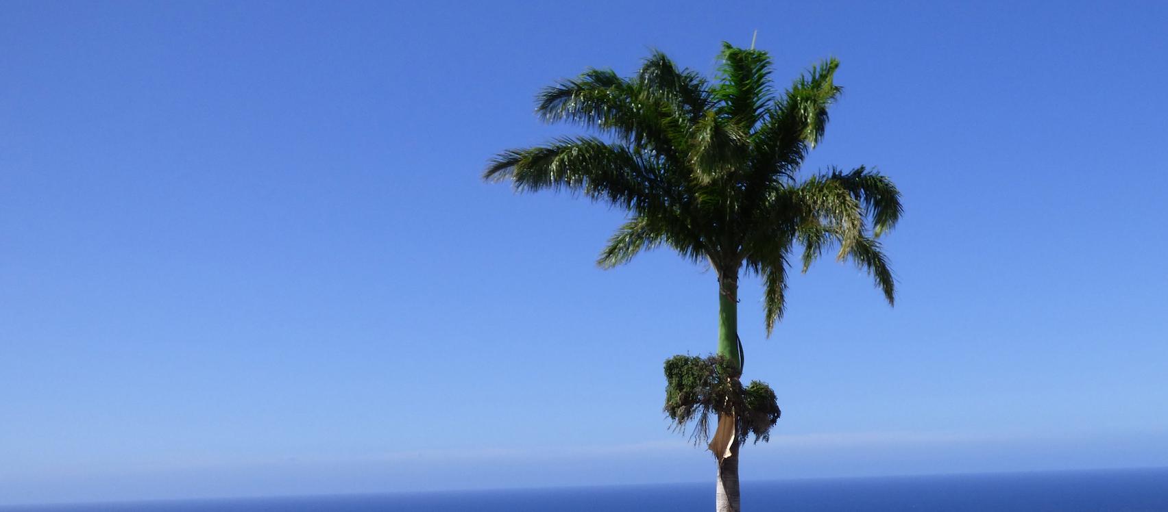 Radio FG : 5 nouvelles fréquences à La Réunion