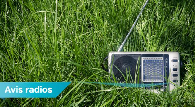Belgique : des obligations mieux respectées par les radios