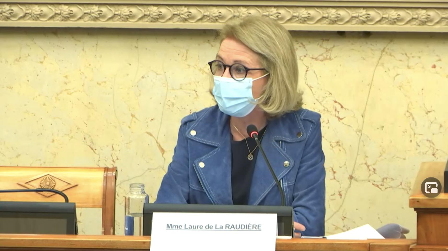 Laure de La Raudière, lors de son audition préalable pour la fonction de présidente de l'ARCEP à l'Assemblée nationale, le 13 janvier dernier © Assemblée nationale