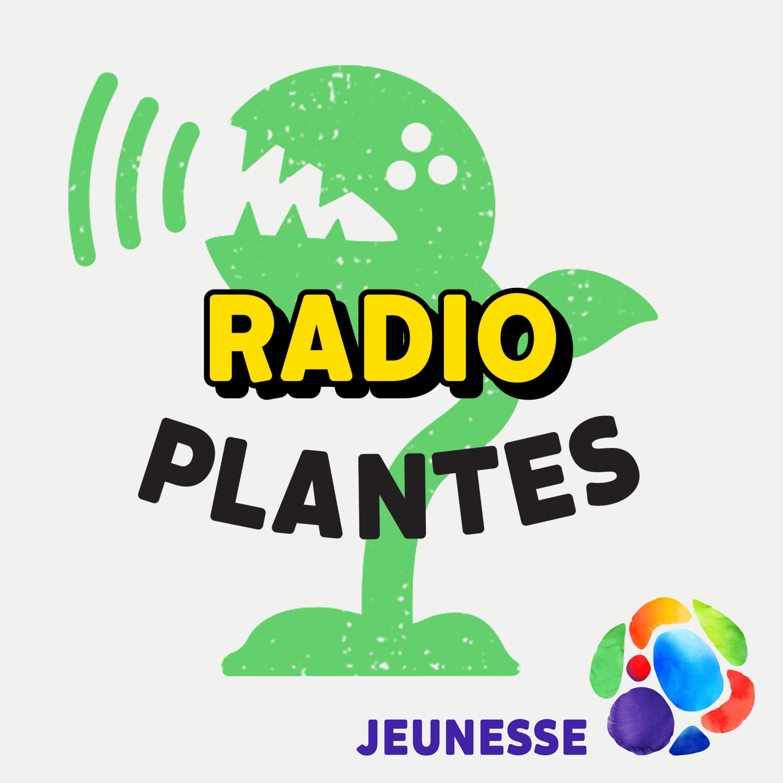 Radio Plantes : la radio pour et par les plantes