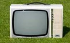 39 400 téléspectateurs quotidiens en moyenne pour chaque TV locale
