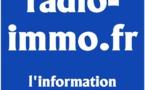 Les nouveaux modèles économiques des webradios