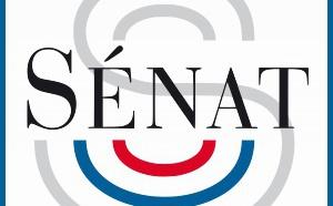 Le Sénat crée une mission sur l'avenir des médias