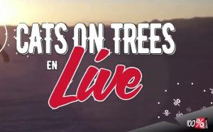 Cats on Trees en direct sur 100%