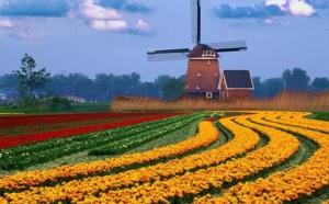 Les Pays-bas envisagent la fin de la FM en 2017