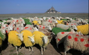 Tendance Ouest en direct du Mont-Saint-Michel